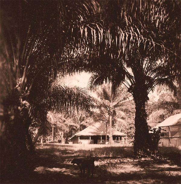 Tchicapica Congo 1948
